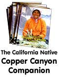 Copper Canyon Book